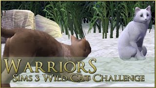getlinkyoutube.com-Blood Under the Full Moon || Warrior Cats Sims 3 Legacy - Episode #39
