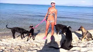 Girl and pack of Dogs