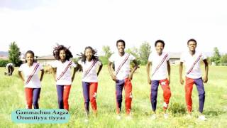 getlinkyoutube.com-Oromo music Gammachuu Aagaa