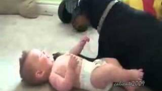 getlinkyoutube.com-Ребёнок и доберман. Самое милое видео!