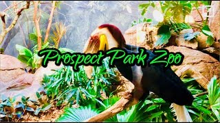 Prospect Park Zoo NYC