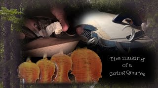Violin Making  - a String Quartet - from the first shaving of wood to the inaugural gala concerts.