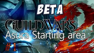 Guild Wars 2: Asura Character Creation & Starting Area