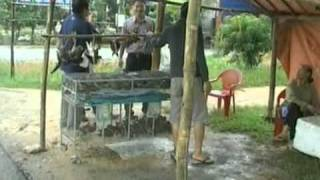 getlinkyoutube.com-Rầm rộ mua bán chim trời