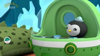 getlinkyoutube.com-Octonauts The Saltwater Crocodile