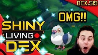 getlinkyoutube.com-1ST ENCOUNTER?! OMG! SHINY PIDOVE REACTION! Live! Quest For Shiny Living Dex #519 | Pokemon ORAS