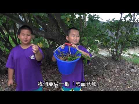 EcoCampus台美生態聯盟學校 青草國小2016eco