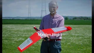 Speedy Red Swept Wing 3D printed RC flying wing