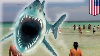 getlinkyoutube.com-Kolejny atak rekina w Północnej Karolinie
