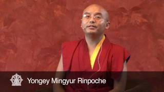getlinkyoutube.com-Losing everything without giving up ~ A Teaching by Yongey Mingyur Rinpoche