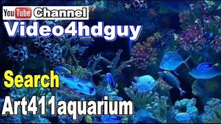 getlinkyoutube.com-Aquarium HD 3 hours Screensaver peaceful relaxing, music sound Video | art411aquarium™