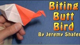 getlinkyoutube.com-Biting Butt Bird