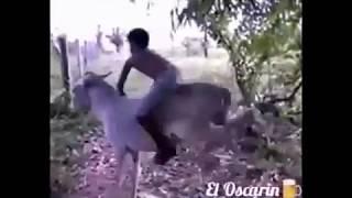 getlinkyoutube.com-si señor yo soy de rancho :-)