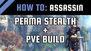 How To: Perma Stealth + PvE Build | Assassin [Blade and Soul Guide / Tips]