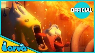 getlinkyoutube.com-LARVA - FORTUNE COOKIE | 2017 Full Movie Cartoon | Cartoons For Children | LARVA Official