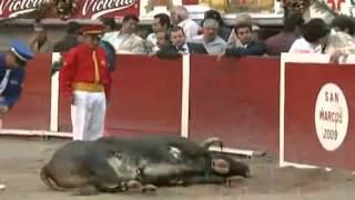 getlinkyoutube.com-El toro se mata solo en Aguascalientes