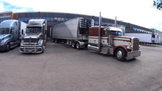2324 Beautiful Peterbilt backing up