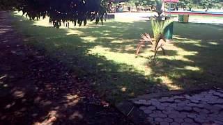 getlinkyoutube.com-Intip anak sekolah lagi Mesum