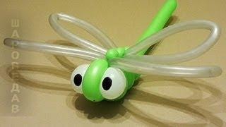 getlinkyoutube.com-Стрекоза из воздушных шаров Твистинг Dragonfly from of balloons.Twisting