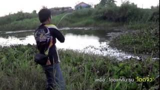 getlinkyoutube.com-เหยื่อโดดจิ๋วแต่ปลาไม่จิ๋ว