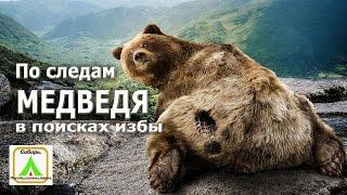 getlinkyoutube.com-По следам Медведя В поисках избы|The footprints of a Bear In search of the hut.|