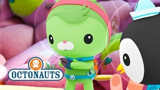 getlinkyoutube.com-Octonauts - Action Packed Sea Missions No.3
