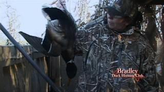 getlinkyoutube.com-Bradley Duck Hunting Club - Late Season Mallards