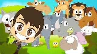 getlinkyoutube.com-Animals for Kids in Arabic  -  اسماء الحيوانات للأطفال باللغة العربية
