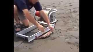 getlinkyoutube.com-fishing machine