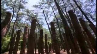 getlinkyoutube.com-American Shaolin Movie in English