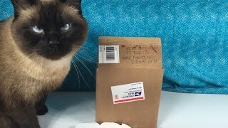 getlinkyoutube.com-Fan Mail Opening #2 Plus Blind Bag Unboxing LPS TMNT Frozen Jelly Belly Surprise Eggs