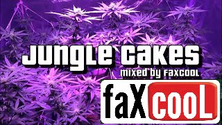 getlinkyoutube.com-DNB MIX - DRUM AND BASS/REGGAE JUNGLE [VOL.22] (by faXcooL)