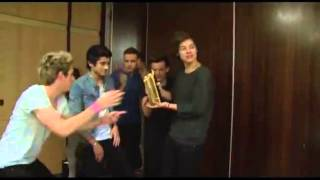 NRJ Music Award 2013 for Best Fan meets One Direction