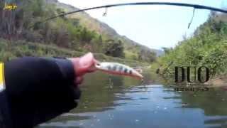 getlinkyoutube.com-ตกปลากระสูบขีด @ต้นน้ำ ลำเขางู