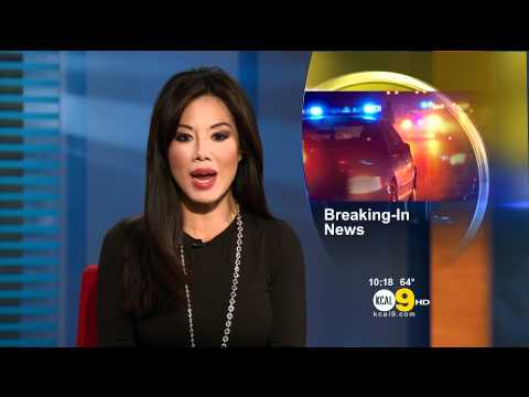 Sharon Tay 2011/09/14 10PM KCAL9 HD; Black top