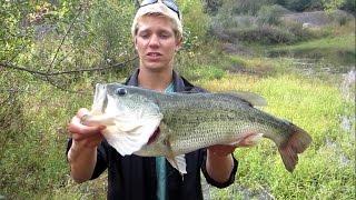 getlinkyoutube.com-Pond fishing BIG Bass