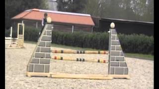Hilmar Meyer Sporthorses 2014 Pony Durano Jumping