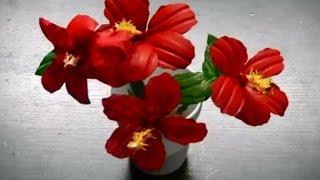 getlinkyoutube.com-Cara Membuat Bunga Imitasi Dari Botol Plastik | Kerajinan Tangan