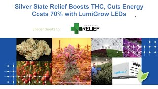 getlinkyoutube.com-Webinar – Silver State Relief Boosts THC, Cuts Energy Costs 70% with LumiGrow LED Grow Lights