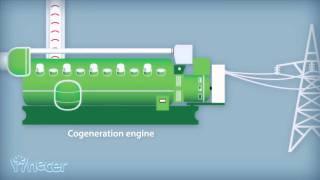 NECER Biomass Gasification Technology