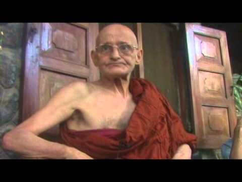Theravada Buddhism: Like The Leaves In My Hand
