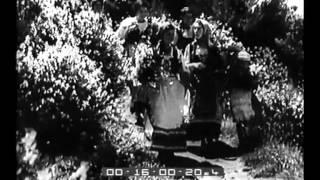 Capri e la Coltivazione delle Ginestre (Video del 1937)