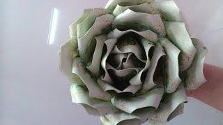 getlinkyoutube.com-พับธนบัตรดอกกุหลาบใหญ่
