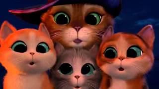 getlinkyoutube.com-Kot w butach - trzy diabły