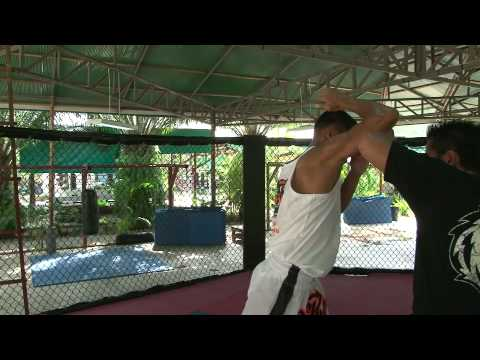 Tiger Muay Thai Techniques: Basic Elbow Strikes