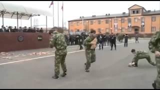 getlinkyoutube.com-Army Ramzan Kadyrov and guests from the United Arab Emirates
