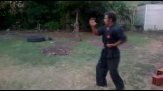 tecnica de movimientos del tigre 34 golpes width=