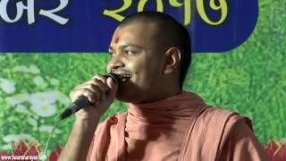 Bhuj Smruti Mandir 25th Patotsav - Harismurti Katha - Day 2 Evening Raas Utsav