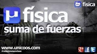 Imagen en miniatura para FISICA Suma de fuerzas y descomposicion vectorial 02