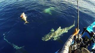 getlinkyoutube.com-Keys Kayak Fishing - That Escalated Quickly